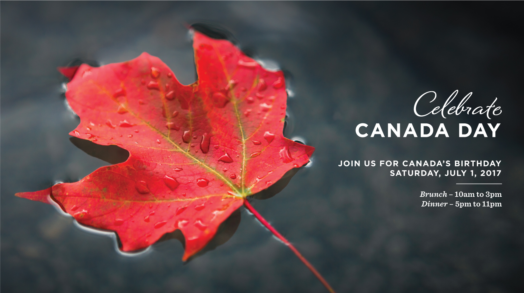 2017 Canada Day Banner